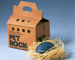 Product shot of Pet Rock, fad from mid-1970s, displayed w. its own carrying case.  (Photo by Al Freni//Time Life Pictures/Getty Images)